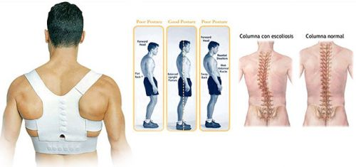 �������� Posture Support ������� ��������� �����