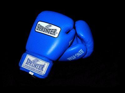 фото Перчатки боксёрские SPRINTER RING-STAR,PROF 8/10/12/14
