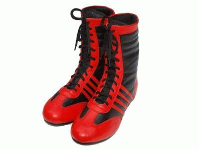 фото Средневысокие боксерки