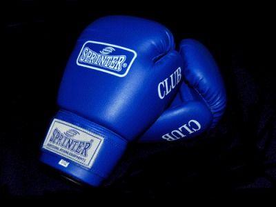 фото Перчатки бокс SPRINTER CLUB. Цвет: синий и красный. размер-вес 8