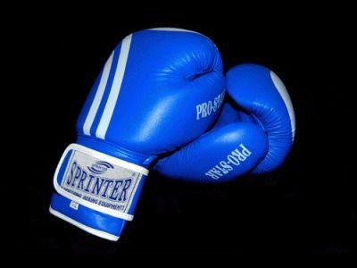 фото Перчатки бокс SPRINTER Proffesional STAR. Цвет: синий и красный. размер-вес 12