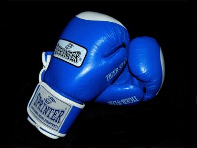 фото Перчатки бокс SPRINTER TIGER-STAR. Цвет: синий и красный. размер-вес 12