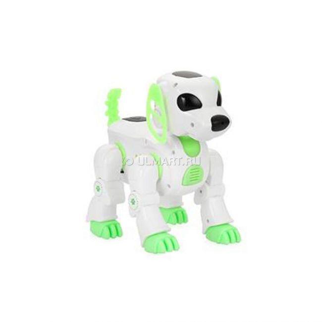фото Робот радиоуправляемый