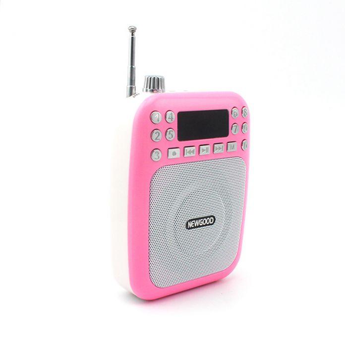 20 Вт Усилитель Голоса Booster Микрофон Мини Портативный Мегафон Динамик с USB TF fm-радио для Учителя Гид продвижение