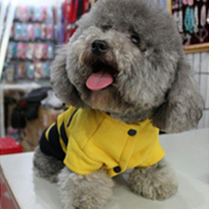 Пэт собаки шмель крылья флис толстовка пальто костюм щенка