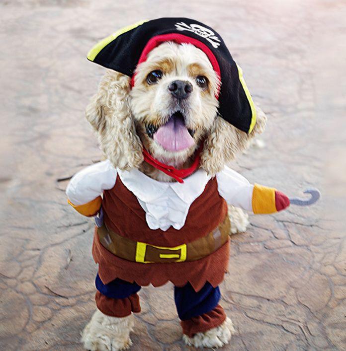 2017 Новый Смешной Костюм Собаки Одежды Любимчика Карибский Пиратский Костюм Corsair переодевание Партия Одежды Одежда для Собак плюс Шляпа 35