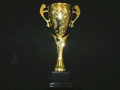 фото Кубок наградной. Высота 35 см. Диаметр чаши 12 см. Материал: пластмасса, металл. 3037-С